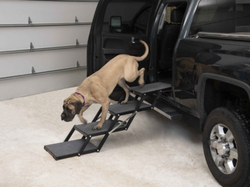 Pet Loader MAX Mastiff