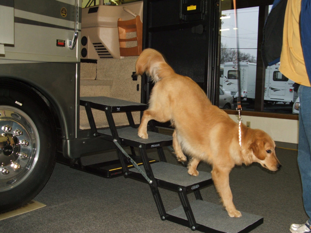 Pet Loader with RV