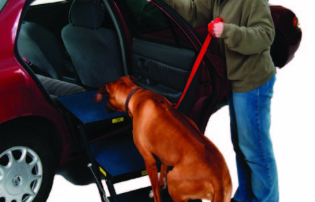 Pet Loader works with all vehicles