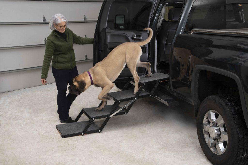 Pet Loader MAX with Mastiff